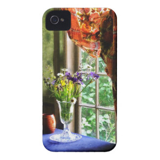 Vase of Flower and Mug By Window Blackberry Bold Cover