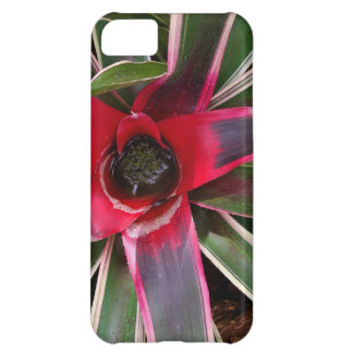 Vase Plant Case-Mate Motorola Droid RAZR iPhone 5C Case