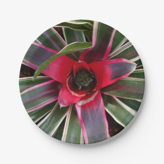 Vase Plant Paper Plates 7 Inch Paper Plate