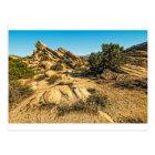 Vasquez Rocks View Postcard