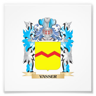 Vasser Coat of Arms - Family Crest Photo