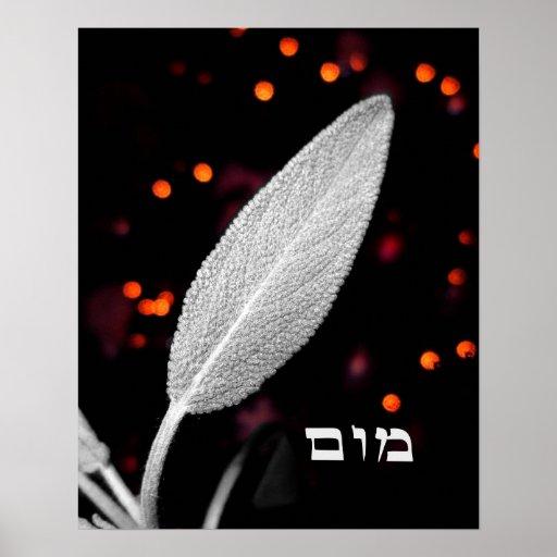 Vav Mem Vav - Spiritual Sage Poster