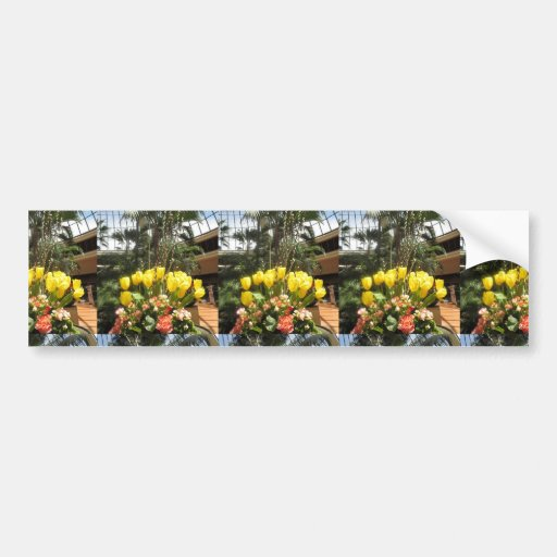 VEGAS Interior Decorations TULIP flowers colorful Bumper Sticker