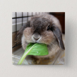 Vegetable munching (button) 15 cm square badge
