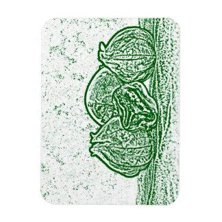 vegetable still life green and white vinyl magnet