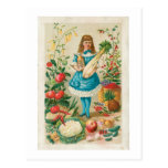 Vegetable Vintage Food Ad Art Post Card