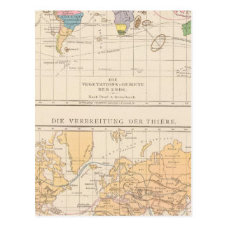 Vegetationsgebiete, Thiere Atlas Map Postcard