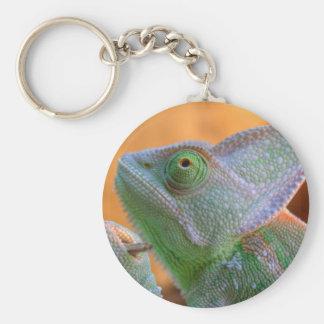 Veiled Chameleon Key Ring