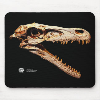 Velociraptor Skull MousePad
