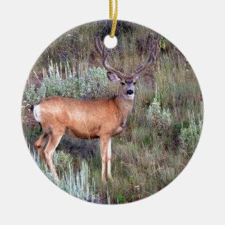 Velvet buck christmas ornament