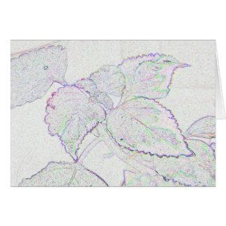 Velvet Plant Note Card