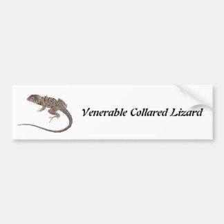 Venerable Collared Lizard Bumper Sticker