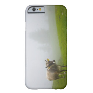 veneto italy barely there iPhone 6 case