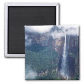Venezuela, Angel Falls, Canaima National Park Magnet