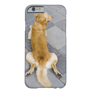 Venice, Italy. Barely There iPhone 6 Case