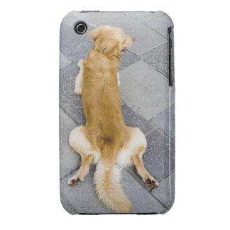 Venice, Italy. iPhone 3 Case-Mate Case
