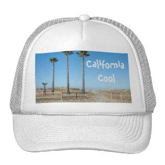 Ventura Beach Palms Cap