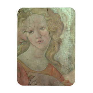 Venus and the Three Graces Offering Gifts to a You Rectangle Magnet