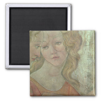 Venus and the Three Graces Offering Gifts to a You Square Magnet