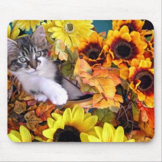 Venus, Cute Maine Coon Kitten Cat, Fun Fall Colors Mouse Pad