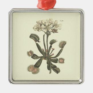 Venus Flytrap Botanical Illustration Christmas Ornament