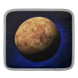 Venus iPad Sleeve