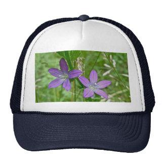 Venus Looking Glass Wildflower Mesh Hat