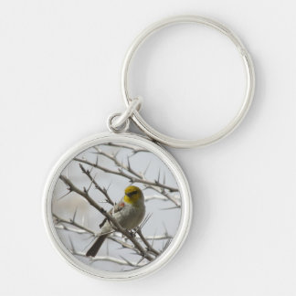 Verdin in a Prickly Perch Key Chains