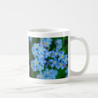 Vergissmeinnicht blühend tee tassen