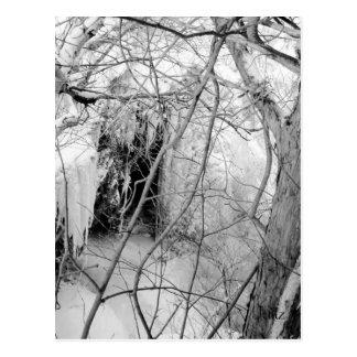 Vermilion Falls Postcard