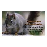 Vermin Exterminator Pest Control Business Card