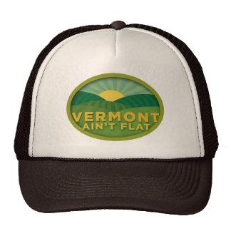 Vermont Ain't Flat Cap
