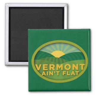 Vermont Ain't Flat Magnet