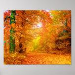 Vermont Autumn Nature Landscape Fine Art Poster