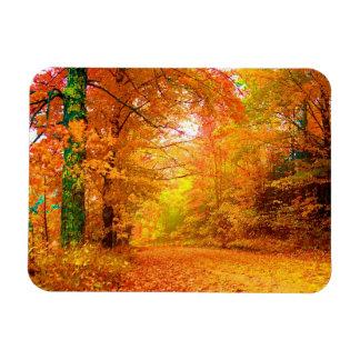 Vermont Autumn Nature Landscape Magnet