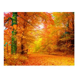 Vermont Autumn Nature Landscape Post Card