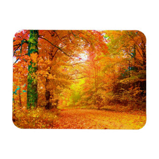 Vermont Autumn Nature Landscape Rectangular Photo Magnet