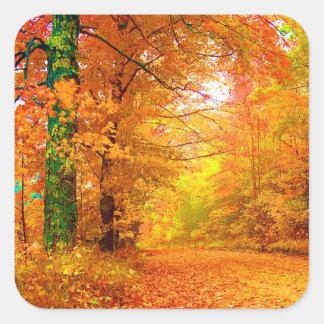 Vermont Autumn Nature Landscape Square Sticker