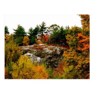 Vermont autumn postcard