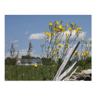 Vermont Country Living Post Cards