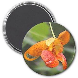 Vermont Flowers Jewel Weed Bloom Photo Magnet