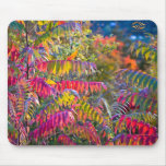 Vermont Foliage Mouse Pad