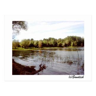 Vermont Lake Front Postcard