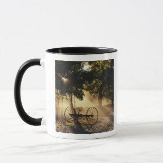 Vermont, Northeast Kingdom, Sunlight falling Mug
