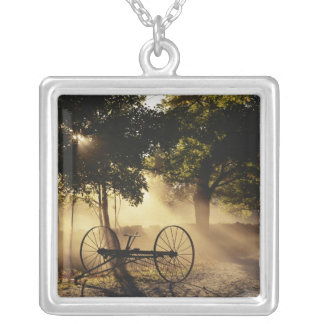 Vermont, Northeast Kingdom, Sunlight falling Silver Plated Necklace