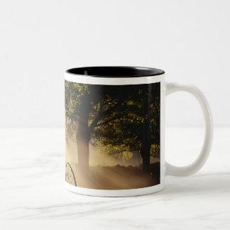 Vermont, Northeast Kingdom, Sunlight falling Two-Tone Coffee Mug