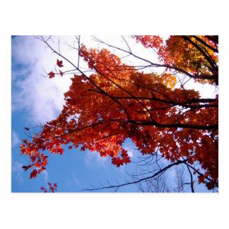 Vermont Postcard 1