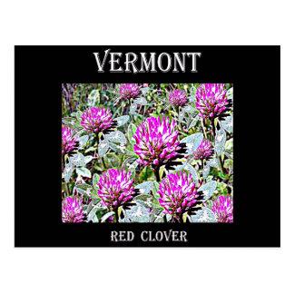 Vermont Red Clover Postcard