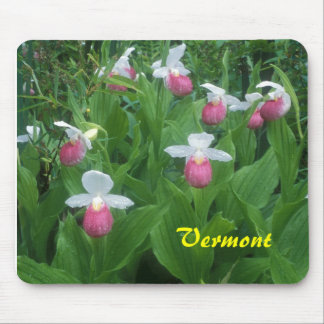 Vermont Showy Lady s Slippers Mouse Pad