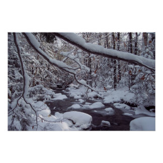 Vermont Snowy Brook Poster